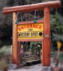 mystery-spot-swirl